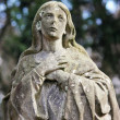 Statue Of Virgin Mary — Stock Photo #10397664