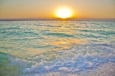 Dead Sea — Stok fotoğraf