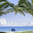 Sun Bed under Palms on Beach — Stock Photo