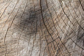 Vintage wooden surface — Stock Photo