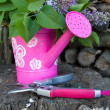 Garden watering can — Stock Photo #10492004
