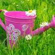 Royalty-Free Stock Photo: Watering can on the grass