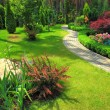 Landscape design — Stock Photo #8690263
