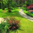 Landscape design — Stock Photo #8690263