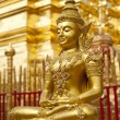 Gold Buddha — Stock Photo #8775072