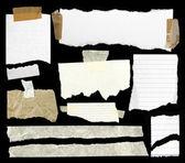 Rippade papper. — Stockfoto