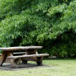 Picnic table - Stock Photo