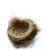 Empty nest on plain background — Stock Photo