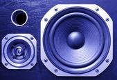 Speakers — Stock Photo