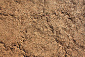 Red Dry Lake — Stock Photo