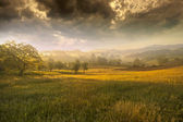 Golden valley — Stock Photo