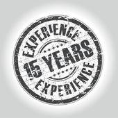 15 años de experiencia sello — Vector de stock