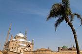 Egypt, cairo. mohammed ali mosque. outside. — Stock Photo