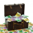 Stock Photo: Chest with euro banknotes. financial crisis, crisis training