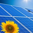 Alternative solar energy. solar energy power plant — Stock Photo