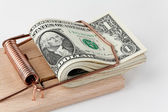 U.s. dollars bills in mouse trap — Stock Photo