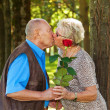 Older elderly couple in love. — Stock Photo #10580882