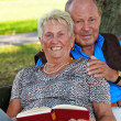 Older elderly couple in love. — Stock Photo #10580890