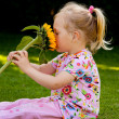 Child with a sunflower in the garden in summer - Stockfoto