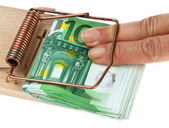 Mousetrap with € bills. — Stock Photo