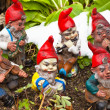 Garden gnomes in garden — Stock Photo #8166671