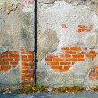 Brick wall as background — Stock Photo #8167188
