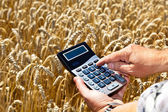 Farmer with a calculator on cereal box — Stock Photo