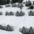 Stock Photo: Avalanche control