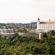 Royalty-Free Stock Photo: Slovakia, bratislava castle and parliament