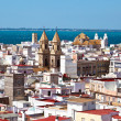 Spain, andalucia, cadiz — Stock Photo #8175470