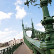 Budapest, hungary, freedom bridge — Stock Photo