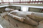 Egypt, memphis, statue of ramses ii — Stock Photo