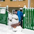 Womat snow removal — Stock Photo #8180763