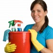 Cleaning woman with cleanser — Stock Photo