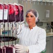 Investigation of blood donors in the blood lab — Stock Photo