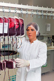 Investigation of blood donors in the blood lab — Stockfoto