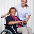 Stock Photo: Nurse and the old woman in a wheelchair