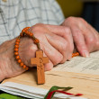 Woman reading the bible and praying rosary — Stock Photo