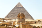 Sphinx de gizeh, egypte — Photo