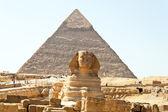 吉萨,埃及狮身人面像 — 图库照片
