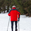 Senior nordic walking in winter — Stok fotoğraf