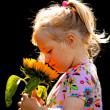 Child with a sunflower in the garden in summer — Stock Photo