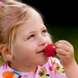 Child eating a strawberry in the garden — Stock Photo