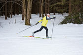 Senior cross country skiing during the winter — Stock Photo
