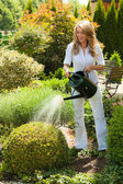 Woman pouring flowers in the garden with watering can — Stock Photo
