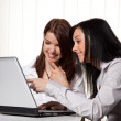 Young women in learning a program on a laptop — Stock Photo #8271744