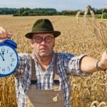 Farmer with clock 11:55 — Stock Photo #8282884