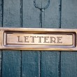 Front door with brass letter slot — Stock Photo
