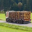 Stock Photo: Transport of logs on truck