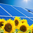 Alternative solar energy. solar energy power plant. — Stock Photo